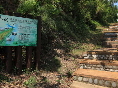 Dawu National Forest Trail